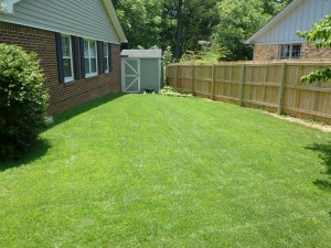 Yard after our sod laying services